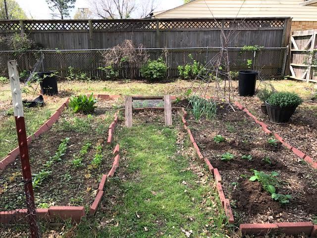 Backyard Garden In April Mak