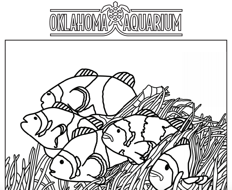 - Downloadable Coloring Pages For Kids - TulsaKids Magazine