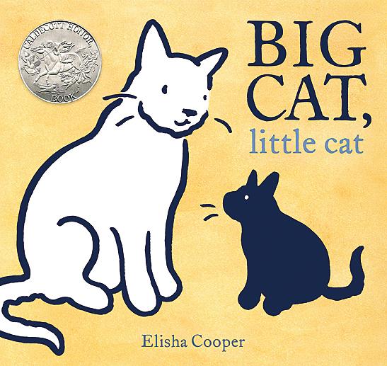 Bigcat S
