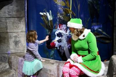 Diver Santa