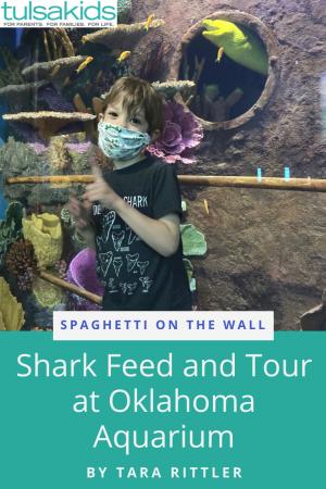 Sotw Shark Feed Pin