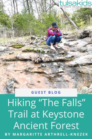 Gb Falls Trail Pin